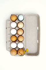 Colored eggs and one broken egg in carton