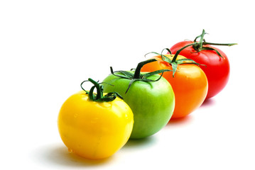 alignment of multicolored tomatoes