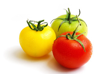 cluster of red yellow and green tomatoes
