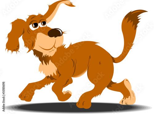 street dog;