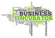 "Word Cloud ""Business Incubator"""