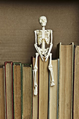 Skeleton on top of books