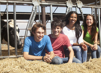 Friends on dairy farm