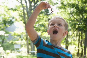 Caucasian boy looking at worm