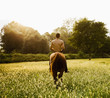 Caucasian man riding horse in field