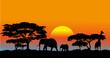Fototapeten,safarie,afrika,süden,verfallen