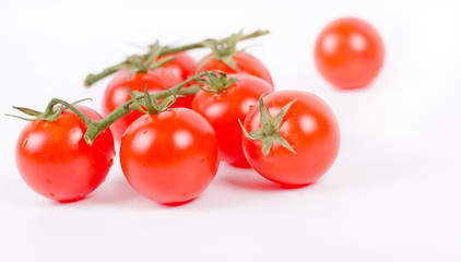 Cherry Tomatoes on Branch Isolated  White