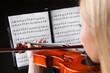 Beautiful young woman playing violin