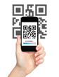 woman hand holding a phone with qr code on the screen and the ba