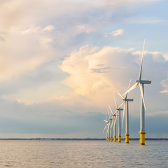 Wind farm generators at sea