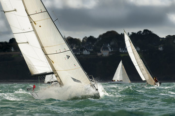 group yacht sailing at regatta