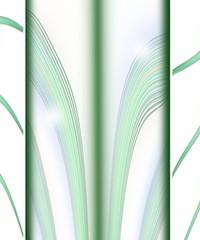cartoncino verde