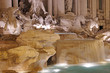 Trevi fountain details