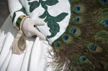 Detail of Carnival costume