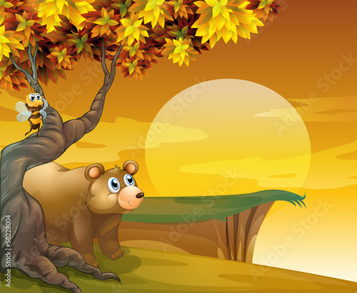 Deurstickers Beren A big brown bear looking at the sunset