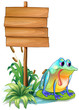 A sad frog above the waterlily beside the wooden signboard
