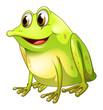 A green bullfrog