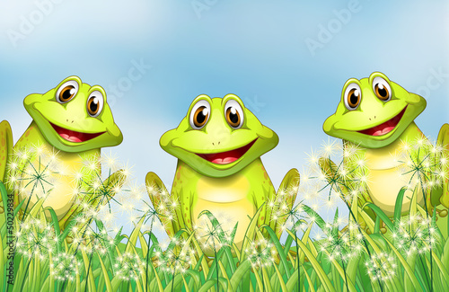 Three happy frogs in the garden