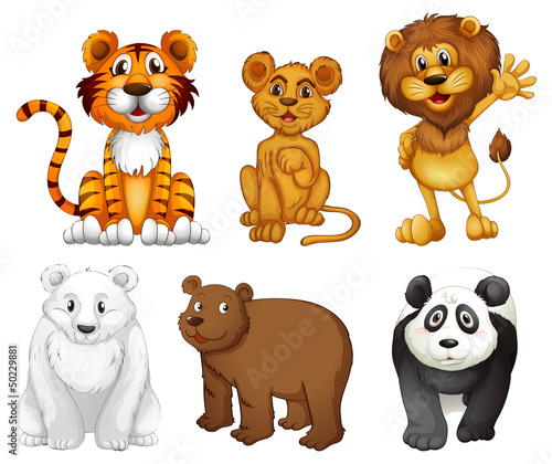 Deurstickers Beren Six wild animals