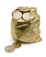 Sack of Coins