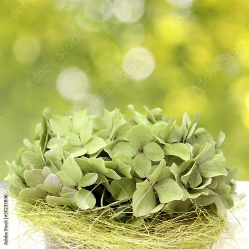 tischschmuck mit grünen hortensien