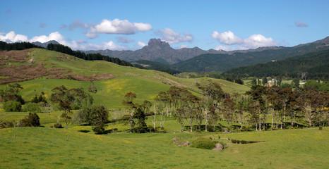 Wiesen und Berge auf der Coromandel-Halbinsel