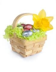 Easter basket, chocolate eggs, daffodil on white.