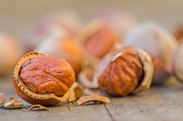 hazelnuts close up