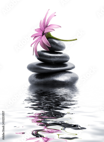 zen spa stones with purple flower © Romolo Tavani