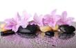 Fototapeten,orchid,spa,blume,wasser