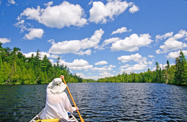 Canoer on a Lake in the North Woods