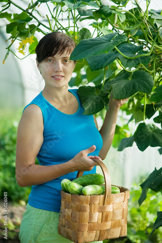woman picking cucumber
