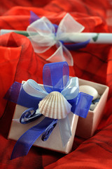 Wedding invitation and gift