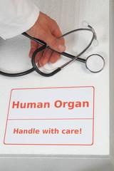 Box fuer Organtransplantation mit Hand von Arzt