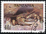 stamp printed in Tanzania shows a prawn