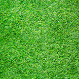 Artificial Grass Field Top View Texture poster