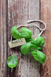 Fresh basil leaves and name tag