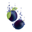 Vector Illustration of Plums Falling in Liquid