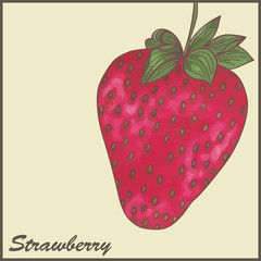 vintage styled illustration of a strawberry