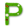 Grass letter P on white background