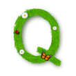 Grass letter Q on white background