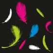 Feder ~ Tierfeder ~ Vogelfeder ~ Daunen ~ Gefieder - Colorful