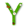 Grass letter Y on white background