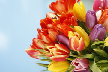 Frühling bunter Tulpenstrauss - spring floral bouquet tulips