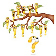albero delle certezze