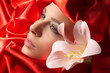 Junge hübsche Frau mit Lilie rot umhüllt