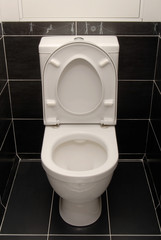 The white toilet bowl is in black interior.