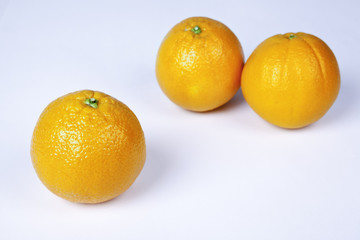 Group of organic oranges