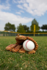 Baseball and Glove in the Outfield