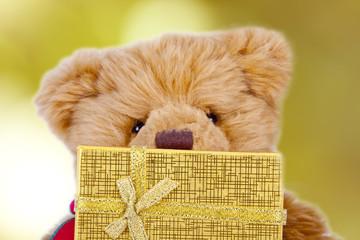 oso de peluche con regalo